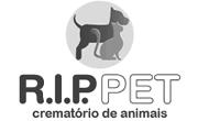 R.I.P Pet