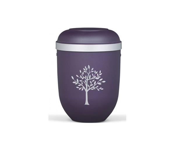 Urna Violeta